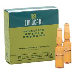 ENDOCARE B Fiale 1 ml